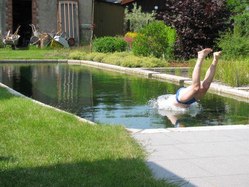 Zwemvijver doehetbeterzelf for Zwemvijver doe het zelf