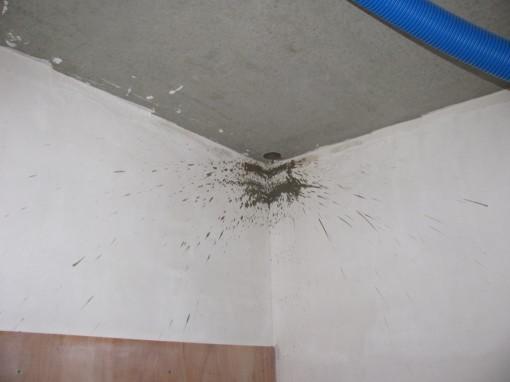 Precies of iemand heeft explosieve schijterij tegen het plafond gehad...