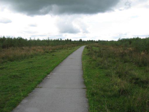 Fietspaden door de natuur
