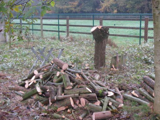 Een nieuw stapeltje brandhout.